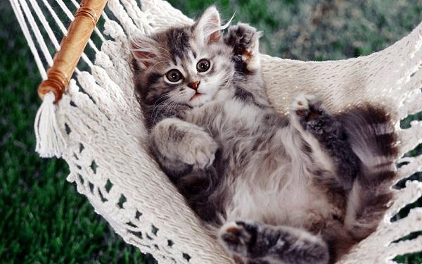首猫背を治して、心と身体を150%元気にする9つの方法